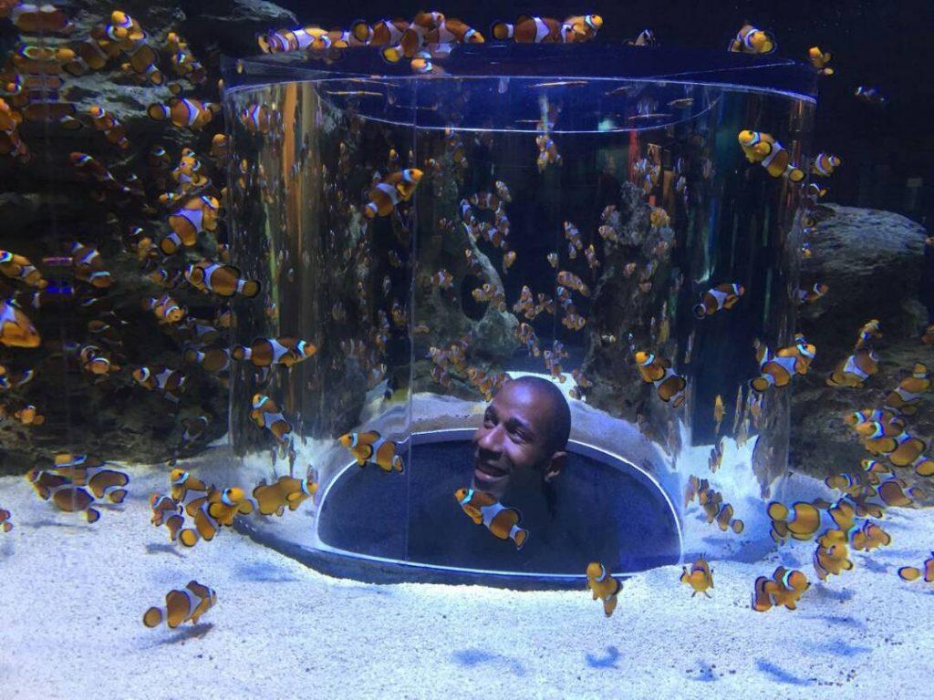 Visiting the aquarium after WordCamp Cape Town